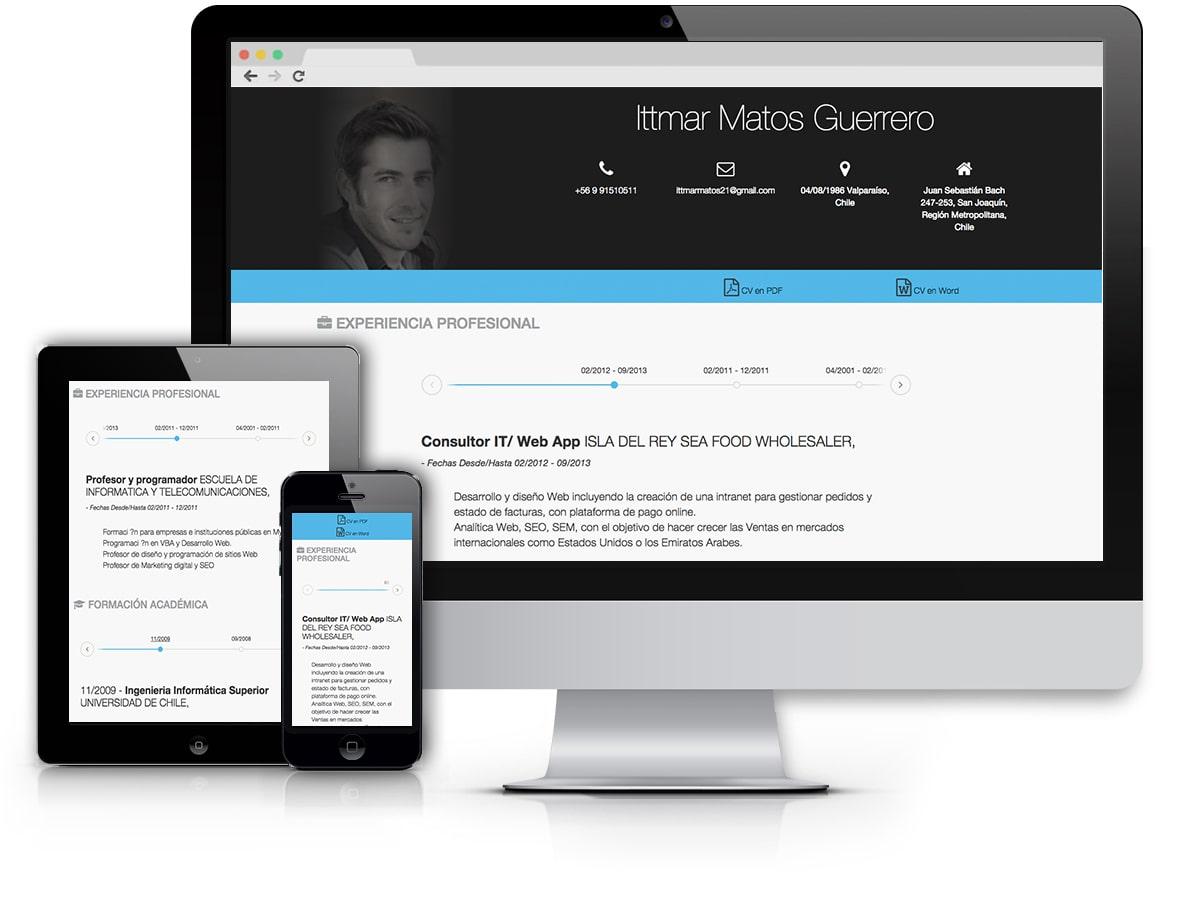 modelos cv online - modelos efectivos y profesionales