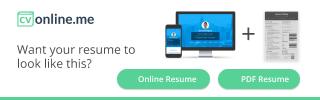 Online CV Maker  Professional CV Builder  Make the Perfect PDF  Online CV in minutes